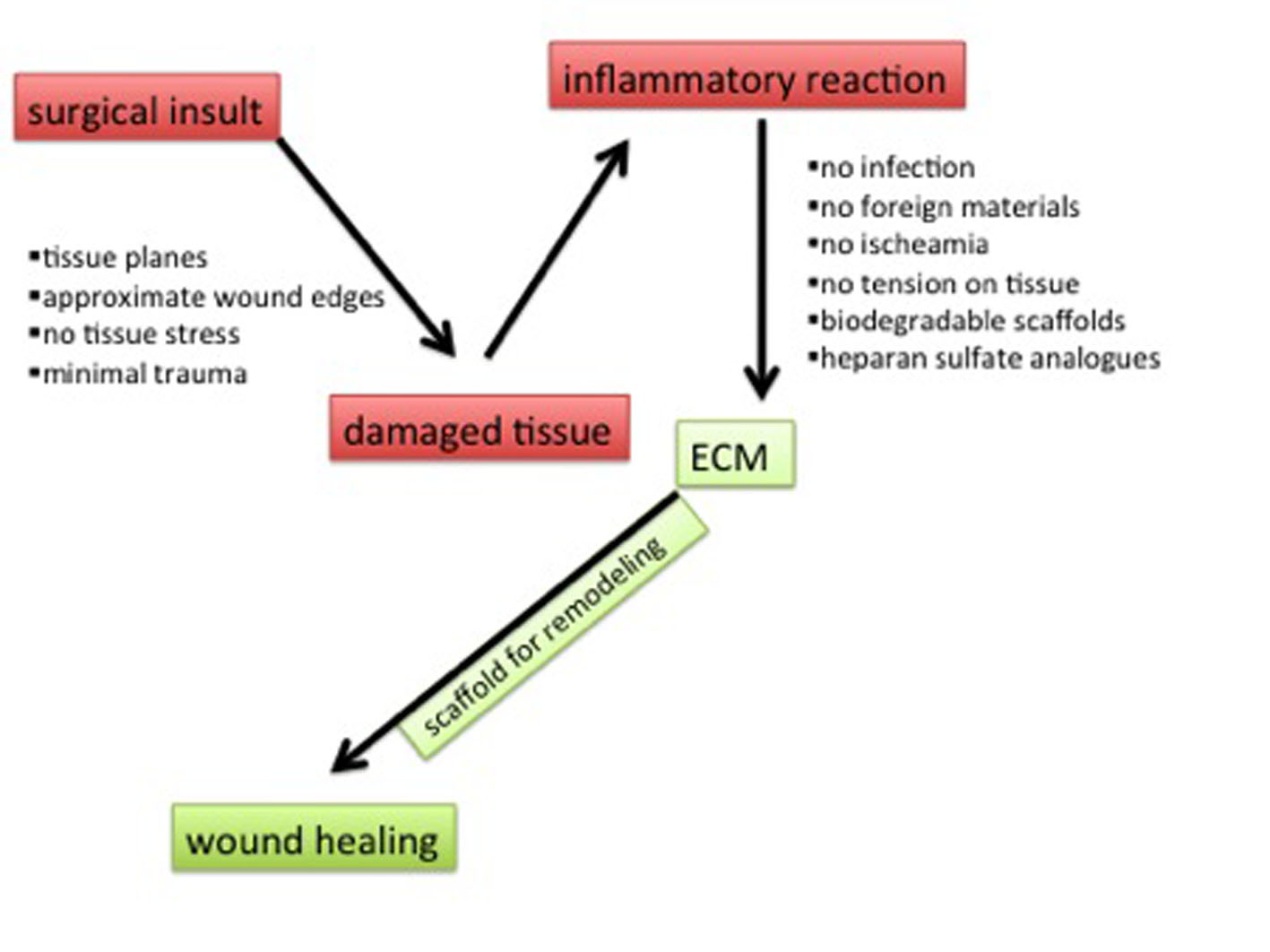 Native Tissue Repair and Principles of Wound Healing